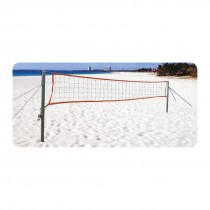 BEACH VOLLEYBALL POLE STAG - INCLUDES NET